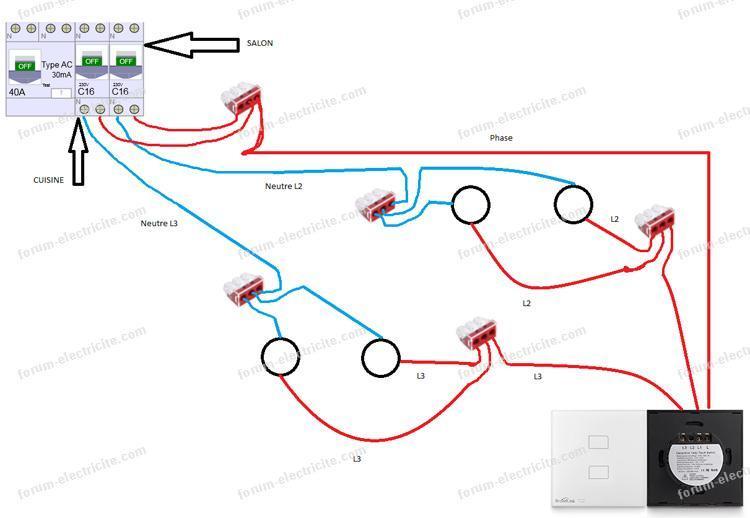 brancher 2 disjoncteurs 16A avec un double interrupteur