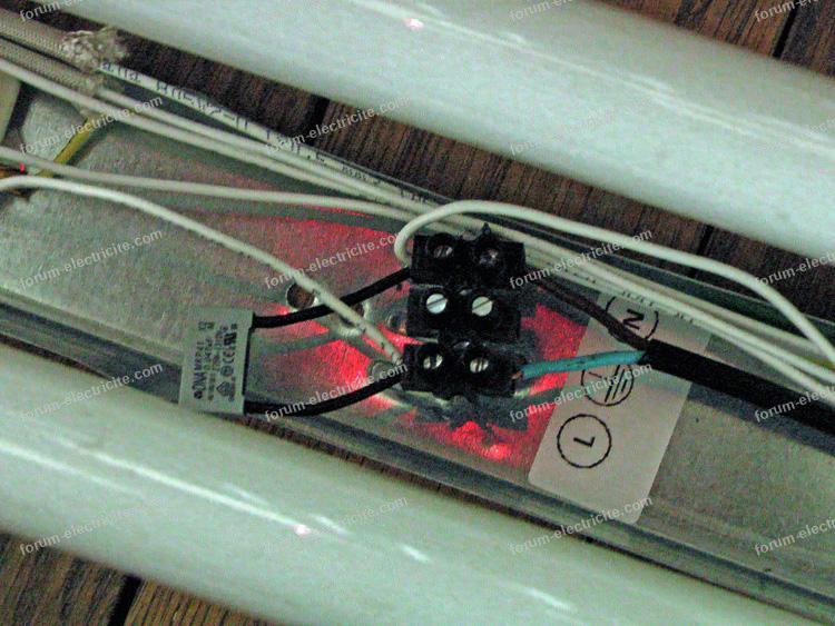 domino électrique standard
