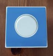 interrupteur bleu