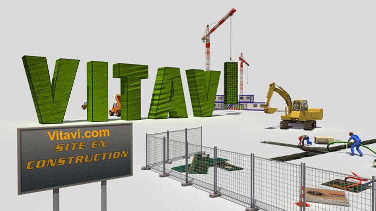 vitavi.com le portail d'échanges pour les artistes